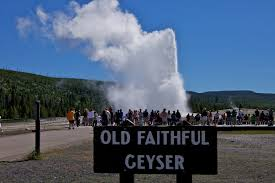 A Great Live Streaming Webcam-Old Faithful